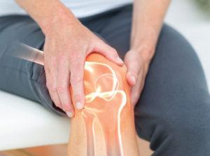 musculoskeletal knee